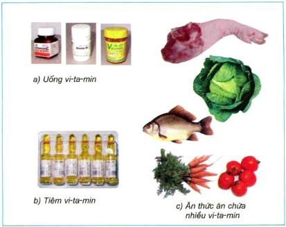 Để cung cấp vi-ta-min cho cơ thể, bạn chọn cách nào dưới đây?