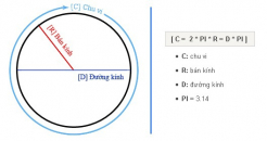 Công thức và cách tính chu vi hình tròn