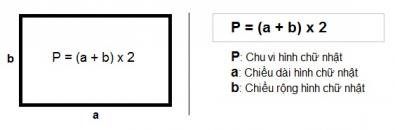 Công thức và cách tính chu vi hình chữ nhật